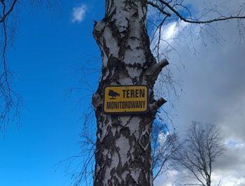Teren monitorowany - tabliczka umieszczona na drzewie.